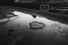 Ball in puddle Royalty Free Stock Images