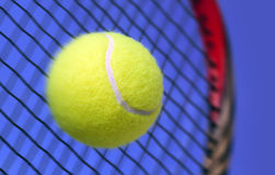 Ball and Racket Stock Images