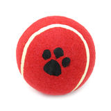 Ball red tennis for pets dogs. This is a red pet tennis ball Stock Photo