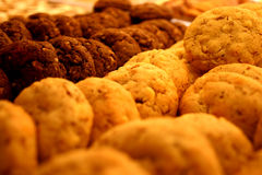 Ball-shaped chocolate cookies royalty free stock photo