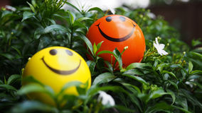 Ball smile 01 Stock Images