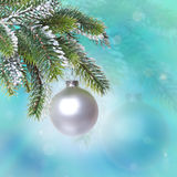 Ball and snow-covered branches of a Christmas tree Royalty Free Stock Photography
