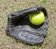 Ball in softball grove Royalty Free Stock Photography
