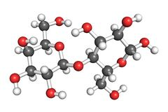Lactose molecule. Ball and stick model of a lactose molecule. Atoms are coloured according to convention (hydrogen-white, oxygen-red, carbon-grey Royalty Free Stock Photos