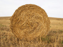 Ball of straw Royalty Free Stock Images