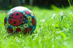 Ball toy grass Royalty Free Stock Images