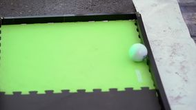 Ball toy rolls. On a carpet stock video