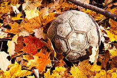 Ball in the woods during autumn. Autumn leaves surrounds an old ball in the woods Stock Image