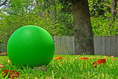 Ball in Yard Stock Photography