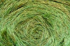 Balla circolare della priorità bassa verde dell'estratto del fieno Fotografie Stock