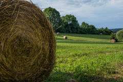 Balla di fieno dell'azienda agricola Immagine Stock Libera da Diritti