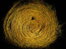 Balla di fieno isolata Fotografie Stock