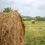 Balla di fieno nella priorità alta nel campo rurale Fotografia Stock Libera da Diritti