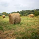 Balla di fieno nella priorità alta nel campo rurale Fotografia Stock