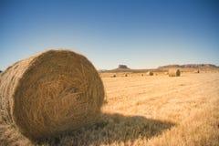Balla di fieno sul campo dorato con cielo blu Immagini Stock Libere da Diritti