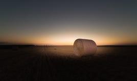 Balla di grano nel campo Fotografia Stock Libera da Diritti