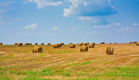 Balla rotonda di Straw In The Field immagini stock
