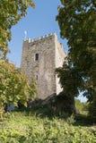 Ballaghmore-Schloss lizenzfreies stockbild