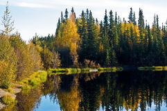 Ballaine Lake in Fall Royalty Free Stock Photography