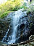 Ballanjui fällt in Nationalpark Lamington, Australien stockfotografie