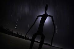 ballard湖雕象 免版税库存照片
