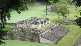 Ballcourt. Copan. Honduras Images libres de droits