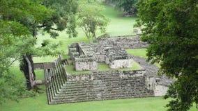 Ballcourt. Copan. Honduras images stock