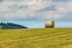 Balle asciutte della paglia sul prato falciato Prato di estate in repubblica Ceca Lavorando ad un'azienda agricola agricola immagini stock