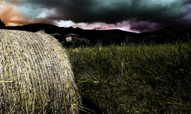 Balle de foin Photographie stock libre de droits