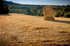 Balle de foin dans un domaine de blé Photos libres de droits