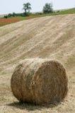 Balle de foin sur le champ après récolte Photo libre de droits