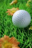 Balle de golf en plan rapproché sur l'herbe artificielle Photo libre de droits