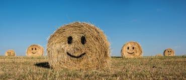 Balle de sourire de paille Photo stock