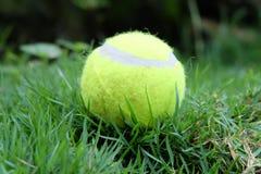 Balle de tennis Images stock