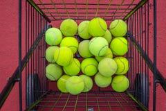 Balle de tennis avec la lumière du soleil Images stock