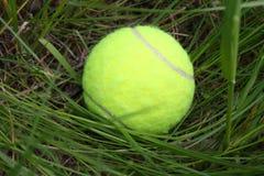 Balle de tennis dans l'herbe, Photographie stock