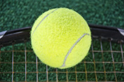 Balle de tennis sur la raquette Photo libre de droits