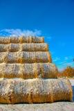 Balle del foraggio della paglia nell'inverno fotografie stock libere da diritti