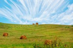 Balle della collina e di fieno dell'erba verde Fotografia Stock Libera da Diritti