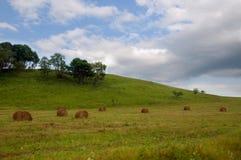 Balle della collina e di fieno dell'erba verde Immagine Stock Libera da Diritti