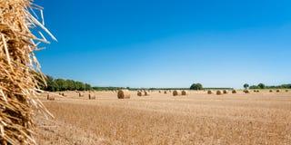 Balle della paglia alla regione della Loira, Francia Balle di fieno sul fi Immagini Stock Libere da Diritti