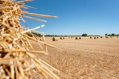 Balle della paglia alla regione della Loira, Francia Balle di fieno sul fi Fotografie Stock Libere da Diritti