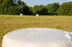 Balle della paglia dell'erba avvolte politene Foraggio animale Fotografie Stock