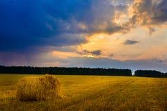 Balle della paglia nel tramonto Fotografia Stock