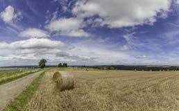 Balle della paglia su terreno coltivabile con il cielo nuvoloso blu Immagini Stock