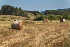 Balle della paglia sulla stoppia in repubblica Ceca Paesaggio agricolo, tempo di raccolto immagini stock libere da diritti