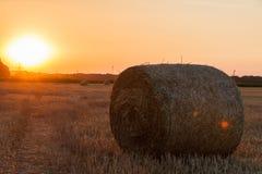 Balle della paglia in terreno coltivabile immagine stock