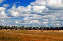 Balle della paglia in un campo con il cielo drammatico Fotografia Stock