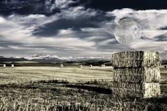 Balle di fieno Fotografie Stock