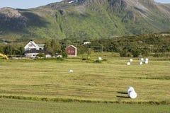 Balle di fieno a Eggum in Norvegia Immagini Stock